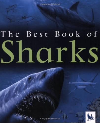 """Shark Books for Kids """"The Best Book of Sharks"""""""