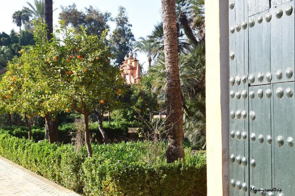 l'alcazar seville andalousie jardins