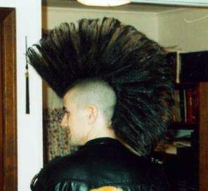 Very Tall Mohawk My New Hair
