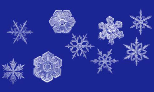Image result for snowflake slur