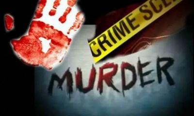 murder1-bolga