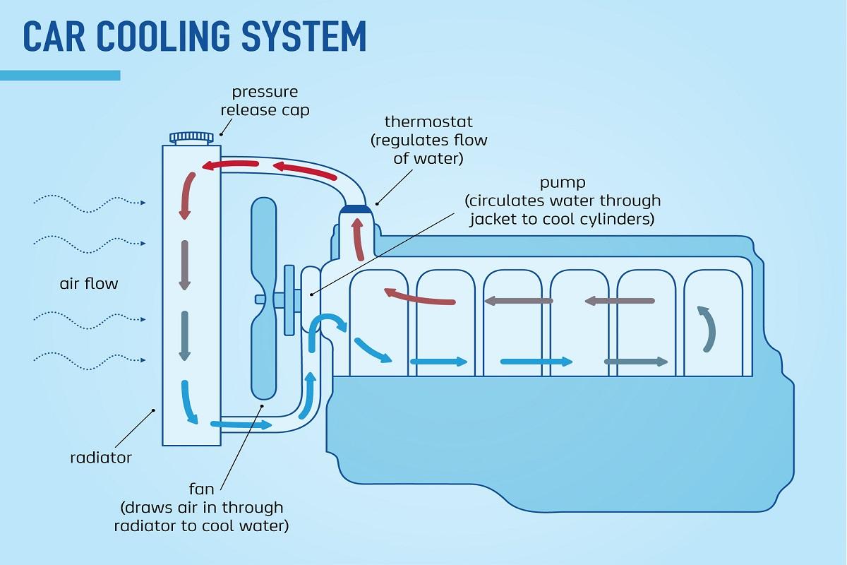 Fabulous Marine Engine Cooling Diagram Basic Electronics Wiring Diagram Wiring Database Obenzyuccorg
