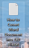 How to Convert Word Document into TXT File