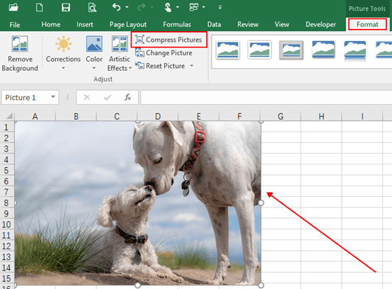 How to Reduce the File Size of Images in Microsoft Excel