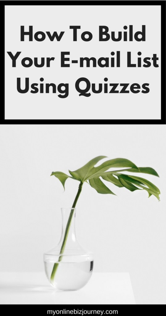 You can use quizzes to do what now ? Yes ! If you're a blogger or vlogger who does not yet have an e-mail incentive to provide to people you want to sign up for your e-mail list, a quiz is actually a great way to get started in that regard.