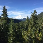 Mount Rainier Scenic Overloook