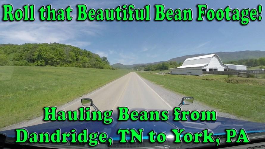 Hauling Beans from Dandridge TN to York PA