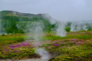 Champs volcanique à geysir