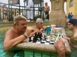 joueurs d'échecs Thermes széchenyi