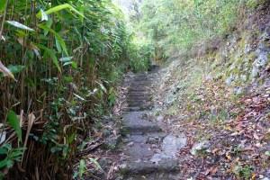 sentier randonnée gite de Bélouve