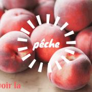 Expression française liée à la cuisine voir la pêche