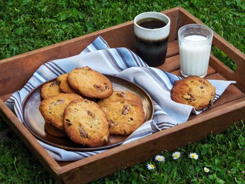 Goûter dans l'herbe avec des cookies flocons d'avoine, raisins secs et noix