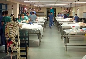 pa school cadaver lab