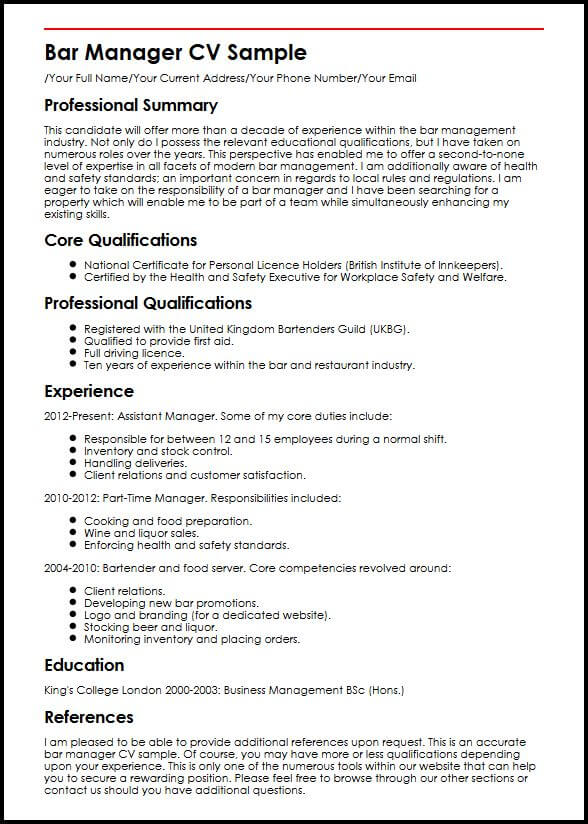 business owner cv example