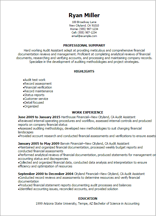 Sample Audit Resume Sarp Potanist Co