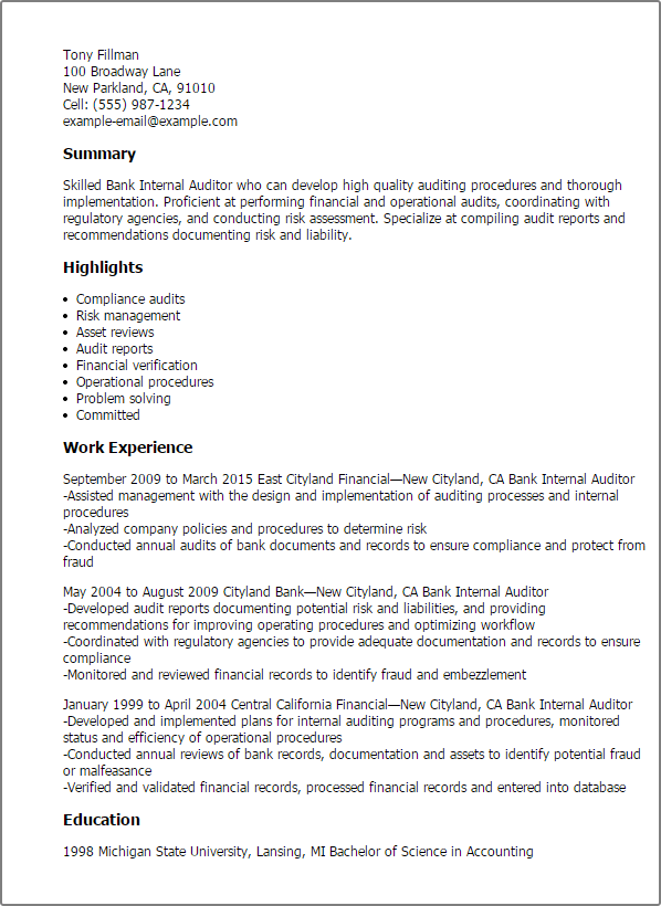 inventory auditor example resume