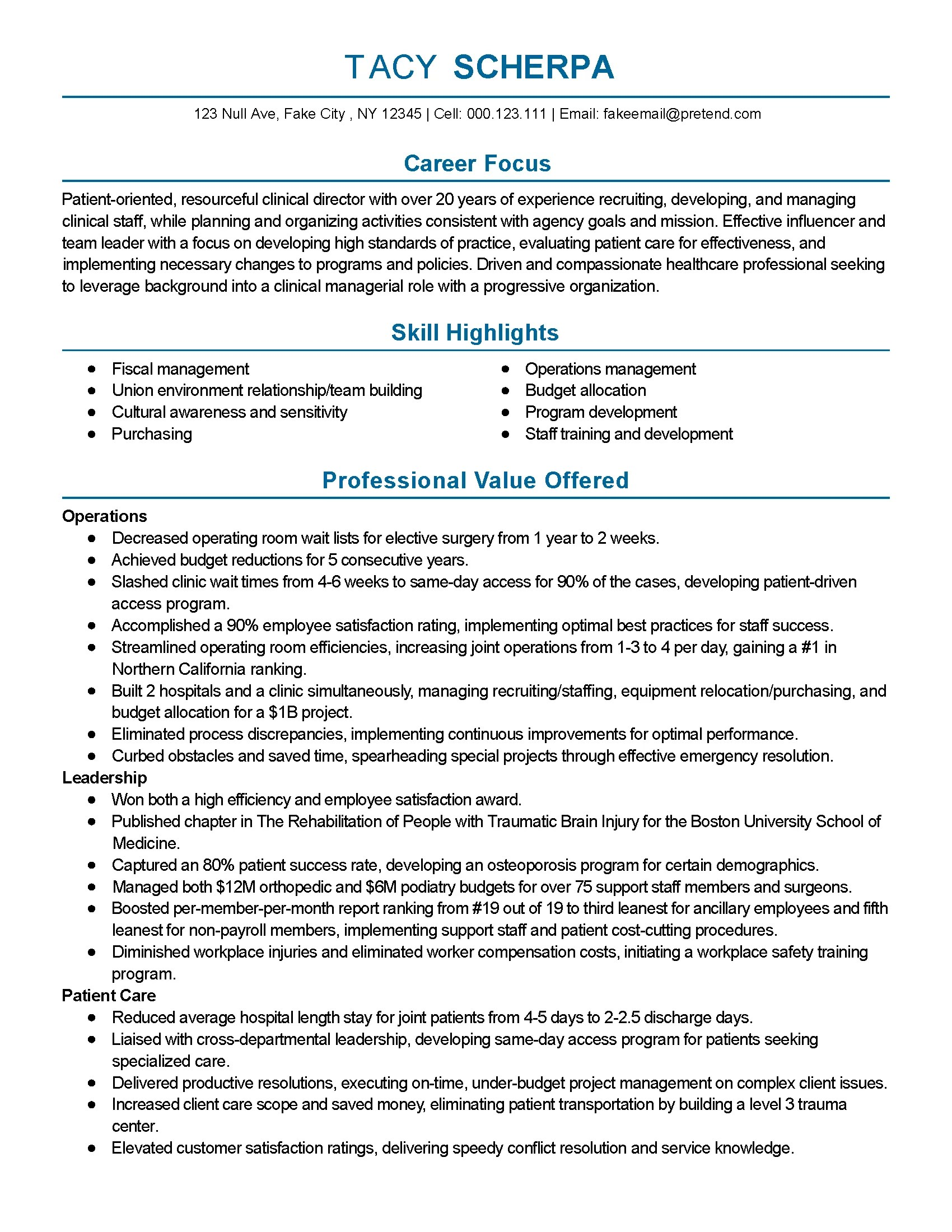 Resume For It Director Position