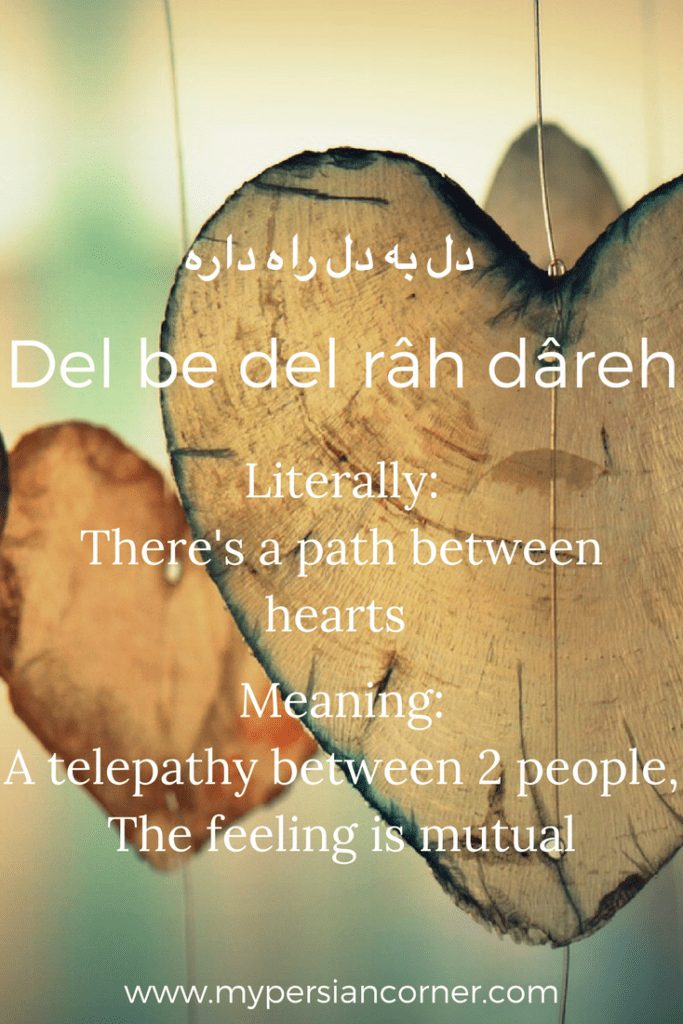 18 Poetic Persian Phrases Youll Wish English Had My Persian Corner