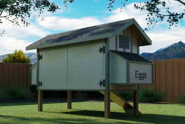 Daisy Coop w Run Building Plans 12 chickens