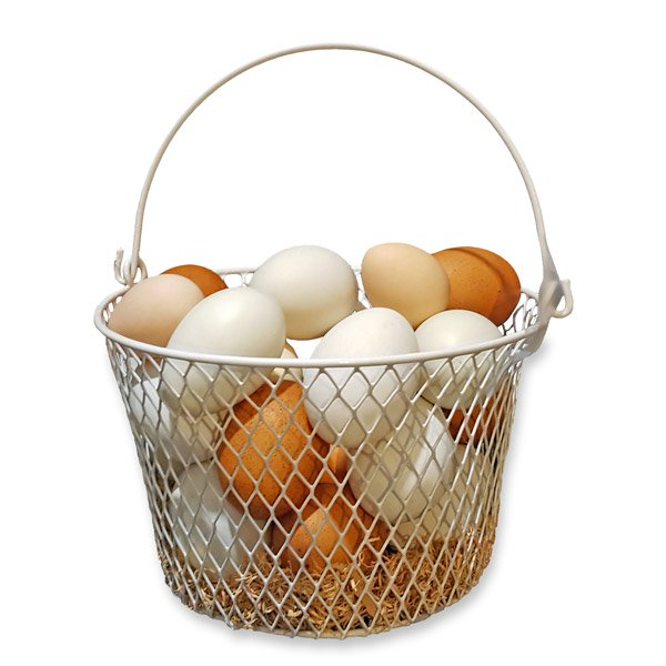 Coated Wire Basket with Handle 36 eggs