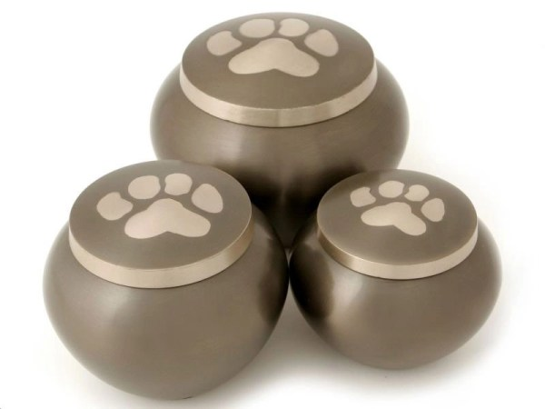 Dog Urns: Odyssey Slate with 1 paw print