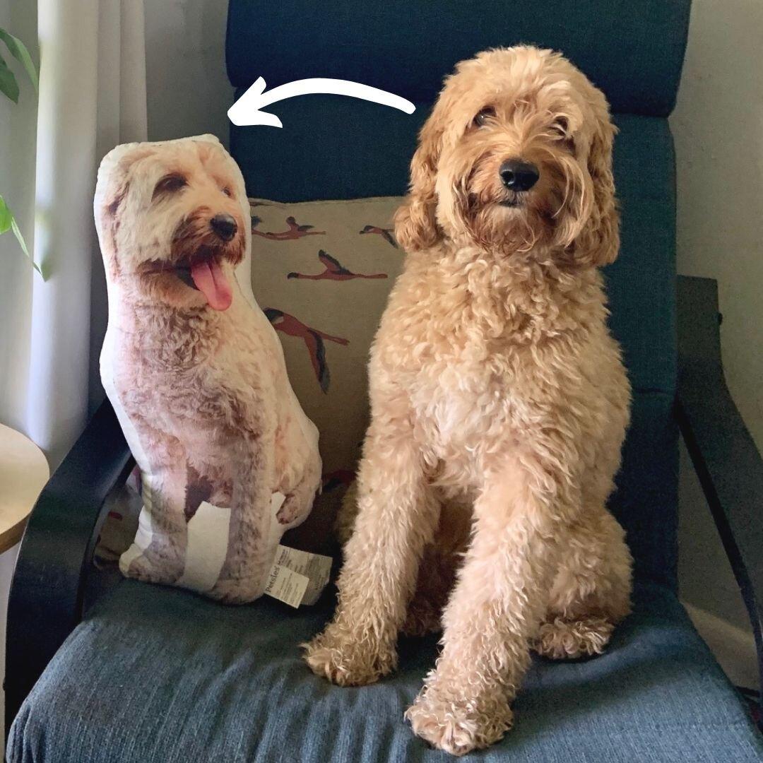 custom pet pillows personalize pet