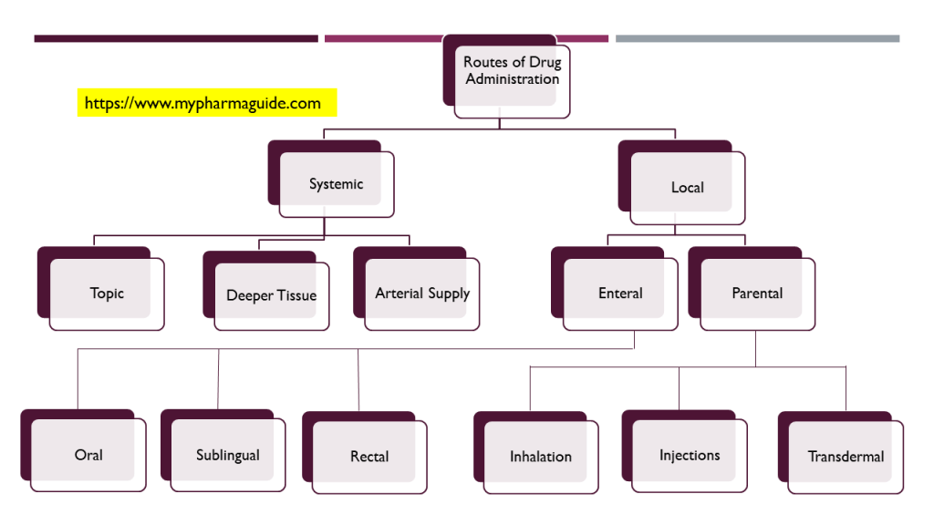 Different routes of drug administrations