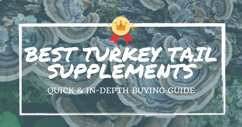 best turkey tail supplements