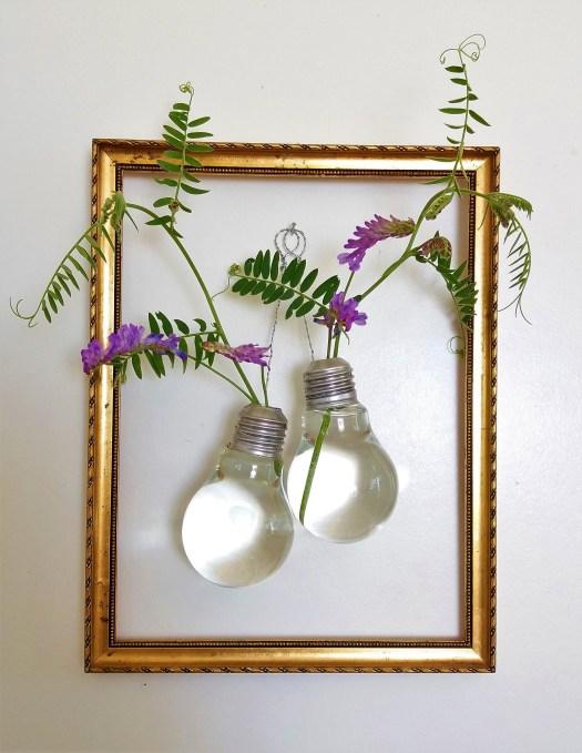 blomstervaser av lyspærer