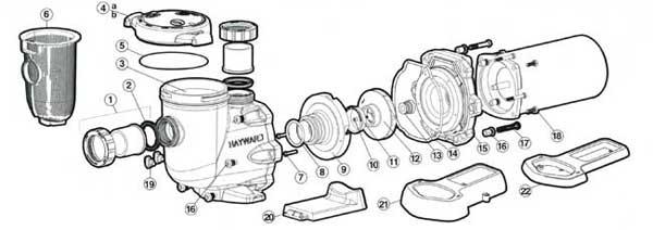 Motor Parts: Hayward Pool Pump Motor Parts