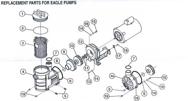 Pentair Eagle Pump Parts Diagram