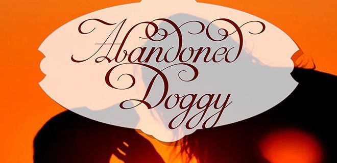 abandoned doggy