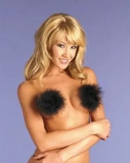 Marabou Feather Pasties Self Adhesive 6 Colors Sexy Women Exotic Dancer