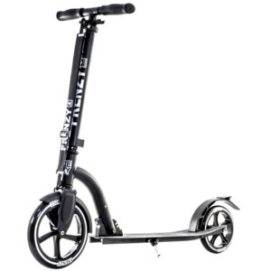 Best Electric Scooter For Adults Scooters For Older Adults