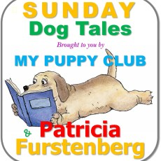 The Puppy's New Life with His New Owners by Patricia Furstenberg – Part 6 of 6