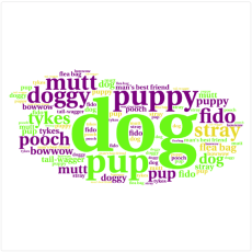 The Words We Call Dogs