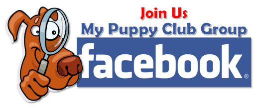 My Puppy Club_Dog