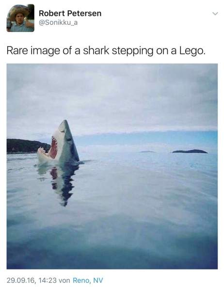 facebook pic of shark on lego www.myrealfairy.com