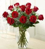 1-800-Flowers - Rose Elegance Premium Long Stem Red Roses - 12 Stem Red Roses