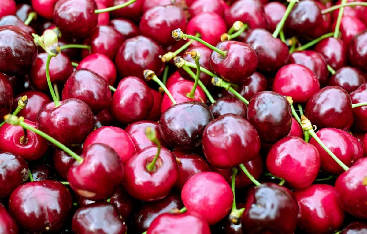 national cherry dessert day and sour cherries my reflecting pool