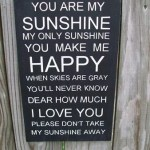 You Are My Sunshine Sign (How to Stencil)