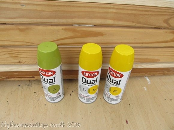 Krylon Dual Spray paint