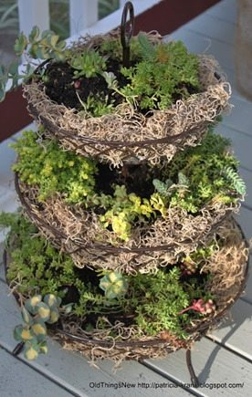 three tier basket as a planter