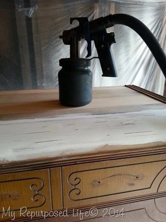 finish-max-pro-paint-sprayer