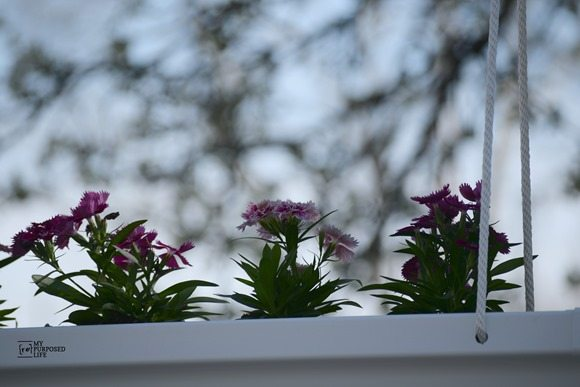 MyRepurposedLife planter made from gutter Home Depot
