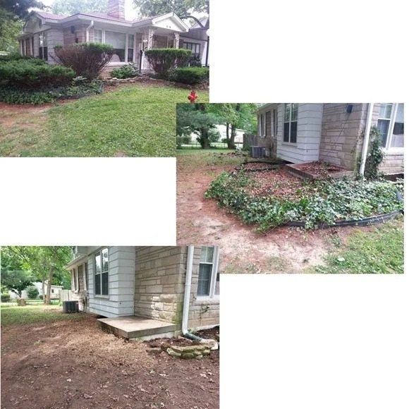 before-after-ugly-bushes