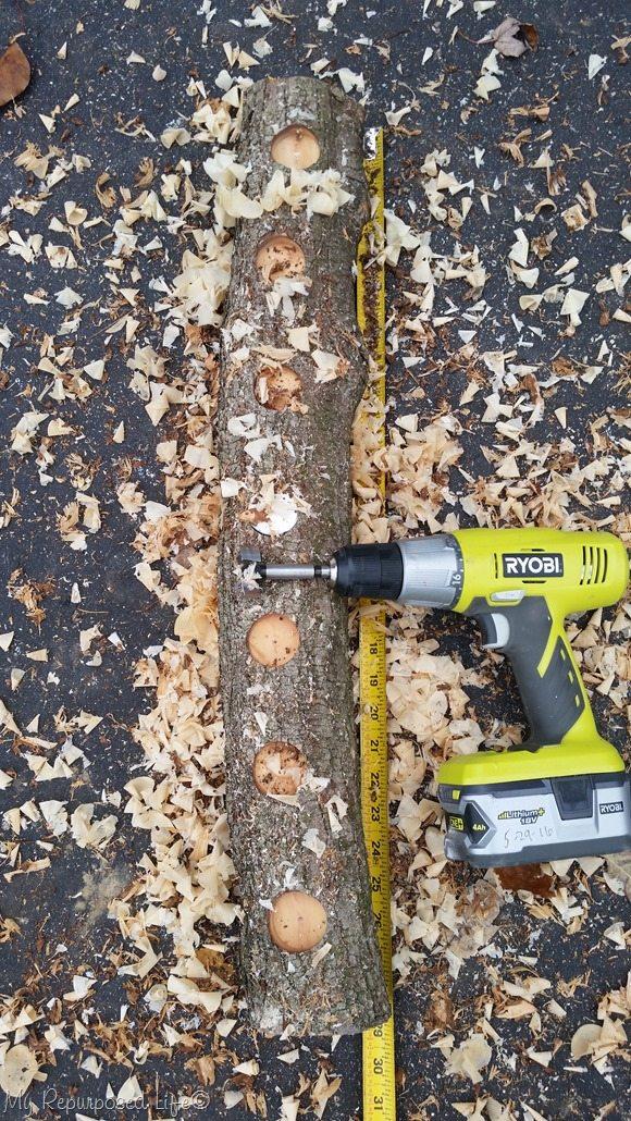 forstner bit for log candle holder holes