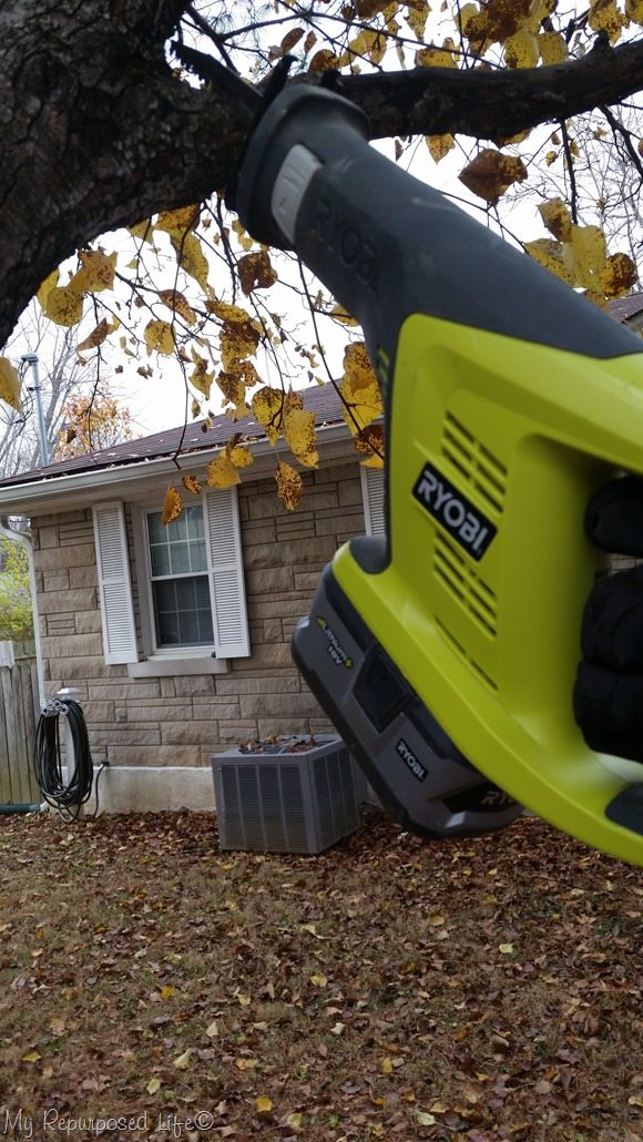 reciprocating saw cuts tree branch