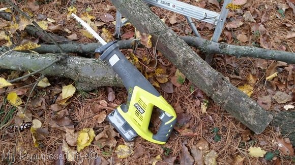 trimming a tree with a sawzall