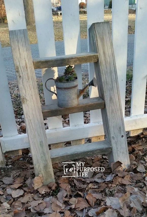 diy rustic ladder plant display MyRepurposedLife.com